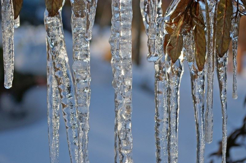 Code Blue Icicles