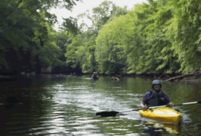 A person canoeing on Rancocas Creek Canoe Trail